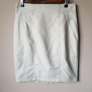 Ann Taylor | NWT Tan Skirt Size 4P